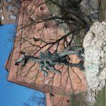 Smok-Wawelski-150x150 Blog