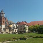 wzgórze-wawelskie-w-czerwcu-150x150 Blog