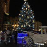 choinka-na-krakowskim-rynku-150x150 Blog